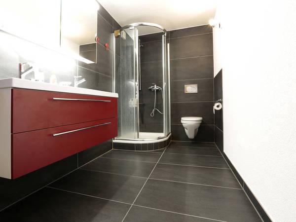 Constructions neuves desclouxcarrelage for Miroir 45x90